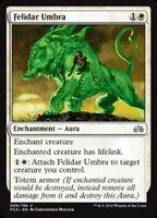 Brindle Shoat Planechase Anthology NM Green Uncommon MAGIC MTG CARD ABUGames