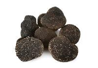 Tartufo nero fresco pregiato (Tuber Melanosporum) (50 g)