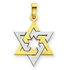 14K Yellow & White Gold Two Tone Polished Satin Jewish Star of David Pendant