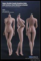 1/6 TBLeague Female Seamless Body Suntan Large Bust S09C w/Steel Skeleton Phicen