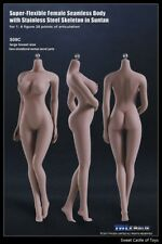 1/6 TBLeague Female Seamless Body Suntan Large Bust S09C w/Steel Skeleton Phicen