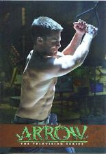 Arrow Season 1 Bronze Parallel Training Chase Card TR8