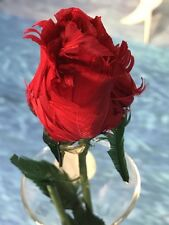 24 REAL FEATHER RED ROSES STUNNING DECORATIONS FOR WEDDING VENUES VALENTINES