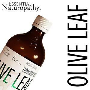 ORGANIC OLIVE LEAF TINCTURE Liquid Extract (Olea europaea) NATUROPATH PREMIUM