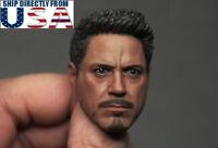1/6 Iron Man Tony Stark Robert Downey Head Sculpt For Hot Toys Phicen Figure USA