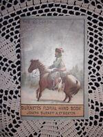 1880 Burnetts Floral Handbook, Burnett's *COCAINE* Remedy