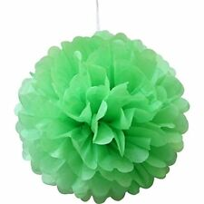 Tissue Paper Pompoms Pom Poms Ball Hanging  Wedding Party Décoration-20Pack