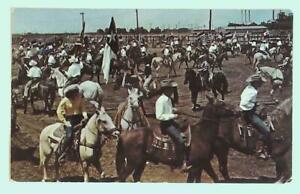 St Joseph MO Missouri Bruns Park in Restaurant Postcard vintage Horse Show  i