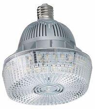 LUMAPRO 22PV19 LED Retrofit Lamp, E39, 100W, 5700K (X13251-WH06*A)