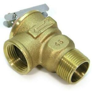 Zurn 3/4 in. Lead Free Brass NPT Pressure Relief Valve