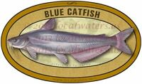Blue Catfish Sticker waterproof fish decal GUARANTEE 3 years no fade
