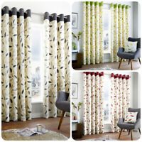 Fusion BEECHWOOD Eyelet Curtains 100% Cotton Modern Leaf Trail Ready Made Lined