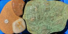 30 lbs Lot #5 Extra Extra Large XXL Colorful River Rocks Water Feature Landscape