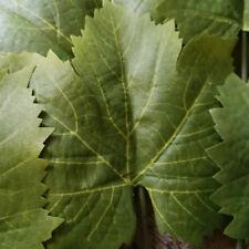 Ahorn Grün Ahornblätter Herbstblätter Herbstlaub Künstliche Blätter Laub Deko