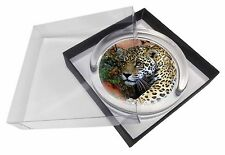 Jaguar Glass Paperweight in Gift Box Christmas Present, AT-4PW