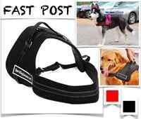 Large PES Dog Harness Adjustable Support Comfy Pet Pulling Control Fast Post