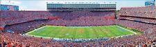 Jigsaw puzzle NCAA University of Florida Ben Hill Griffin Stadium NEW 1000 piece
