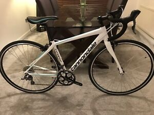 cannondale synapse claris Road Bike NEW Size 48cm Female/Male cannondale Racing