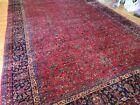 14x21 RARE size Antique Sarough Sarouk wool Oriental Rug Red Navy Blue