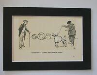 White French Poodle Dog Print Cecil Aldin Beautiful Clip 1928 5x7 Bookplate wMat