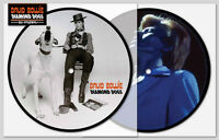 David Bowie - Diamond Dogs - 40th Anniversary picture disc 7 vinyl