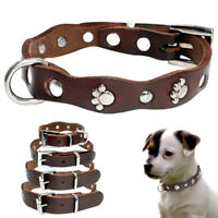 Paw Studded Dog Collar PU Leather Small Medium Puppy Dogs for Chihuahua Brown