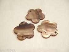 5 x 30 mm teints perles fleur shell: bnsb87 brown