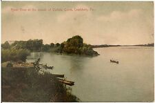 River View at Mouth of buffalo Creek in Lewisburg PA Postcard 1907