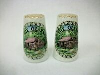 Vintage Ozarks - Salt and Pepper Shakers