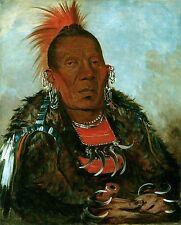 "George Catlin, White Cloud, Chief, Native American Indian, 20""x16"" Art Print"