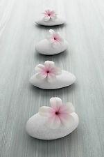 STUNNING PINK FLOWER PETALS SPA ZEN STONES A1 CANVAS PICTURE WALL ART #828