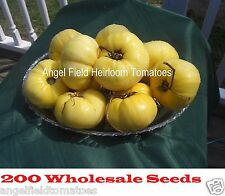 200 Large Great White Heirloom Tomato Wholesale Seeds for Large Garden & Farms