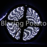 LumenWave 5M 5050 IP65 Waterproof Flexible 300 LED Strip Light -Black PCB- White