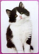 SWAP CARD. GORGEOUS BLACK & WHITE KITTEN. MODERN. RARE. WIDE. LINEN. CAT