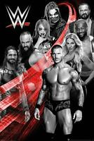 WWE Poster Superstars Swoosh 61 x 91,5 cm Plakat Wandbild Wanddeko Deko Geschenk