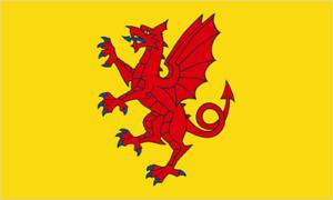 Somerset England Large County Flag 5' x 3'