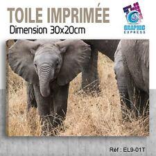30x20cm - TOILE IMPRIMÉE TABLEAU  POSTER DECO - SWAN