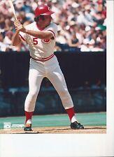8 x 10 Glossy Photo Johnny Bench Cincinnati Reds {091}