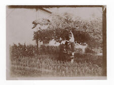 PHOTO ANCIENNE Vers 1900 Cueillette Fruit Femme Enfant Cerise ? Jardin Drôle