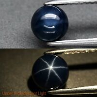 Natural Midnight Blue Star Sapphire, Round , 6 Rays, Thailand