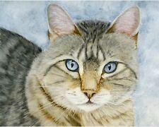 Tabby Cat, Pet Portrait Watercolour PRINT from an Original Watercolour Painting