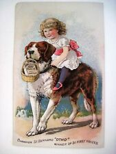 Victorian Trade Card for Pearline Washing Compound w/Prize Winning St. Bernard*
