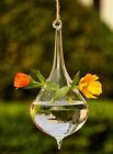 Hanging Glass Ball Vase Flower Planter Pot Terrarium Container Home Garden Decor