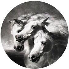 "PHARAOH'S HORSES Herring *CANVAS* Art Print - Size 19"" x 13"" PHAROAH'S - LARGE"