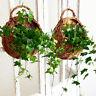 Wand Zaun hängen Pflanzer Pflanze Blumentopf handgemachte Rattan Korb Garten Neu