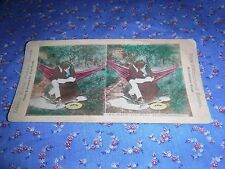 Old Stereoview Liberty Brand We Have All Been There Before Kissing Couple Comic