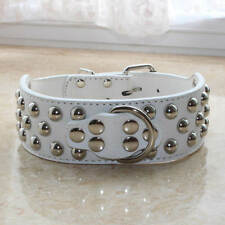 Gator Leather Spiked Studded Dog Collars Large Breed Pitbull Terrier S M L XL