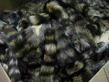 Large Tanned Raccoon Tail  Coon  Fur  Crafts  1 Tail Only # 1