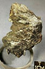 57.2 GRAMS SIKHOTE-ALIN IRON METEORITE,CLEANED, INDIVIDUAL SHRAPNEL