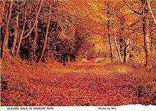BT17926 autumn walk in margam park  wales